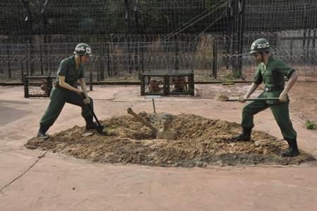Description: Nhà tù Phú Quốc – Biểu tượng cho ý trí kiên cường của những chiến sĩ Cách mạng - ảnh 10